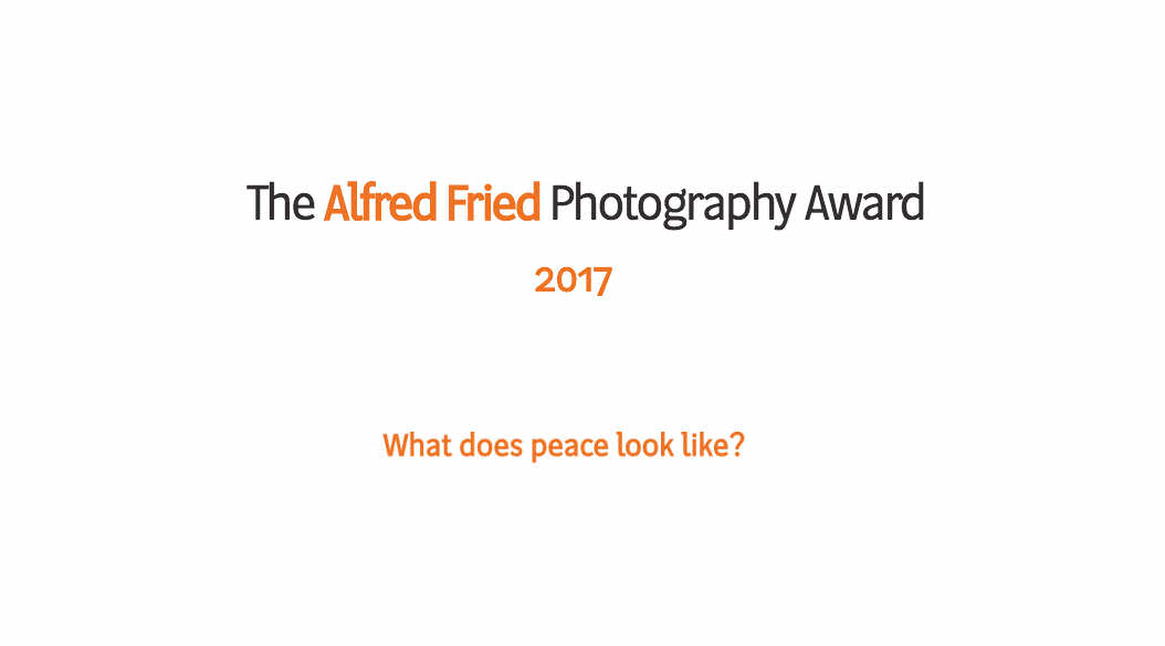 Alfred Fried Award 2017